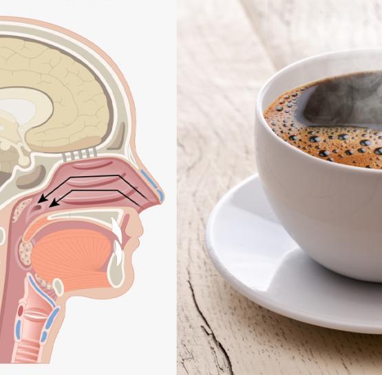 Չի կարելի թեյը կամ սուրճը շատ տաք խմել, այն մահացու հիվանդություններ կառաջացնի