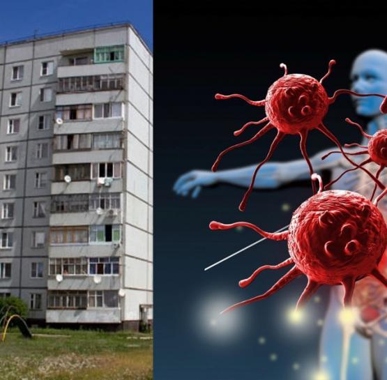 Գիտնականները պարզել են, թե որ հարկում ապրելն է վտանգավոր առողջության համար