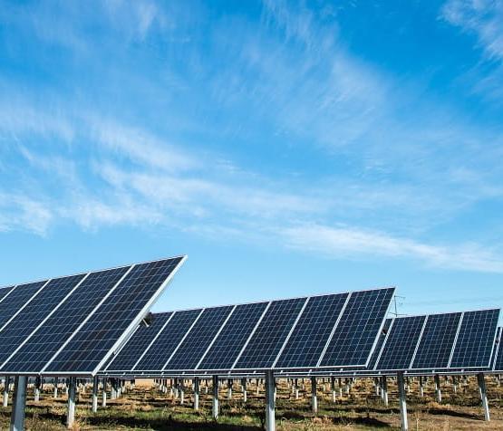 Солнечным батареям помогут… бактерии?