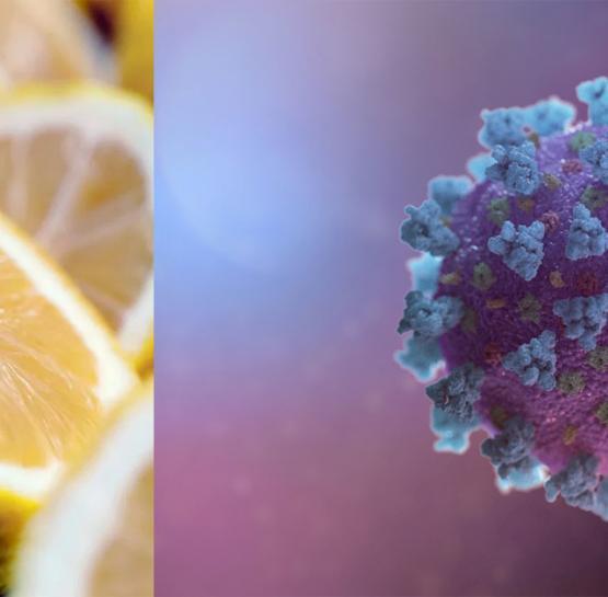 Կորոնավիրուսը հաղթահարելու համար հաճախակի օգտագործեք այս մթերքները