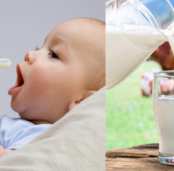 Չի կարելի մինչև 1,5 տարեկան երեխաներին կովի կաթ տալ, պատճառը շատ լուրջ է, իմացեք այդ մասին