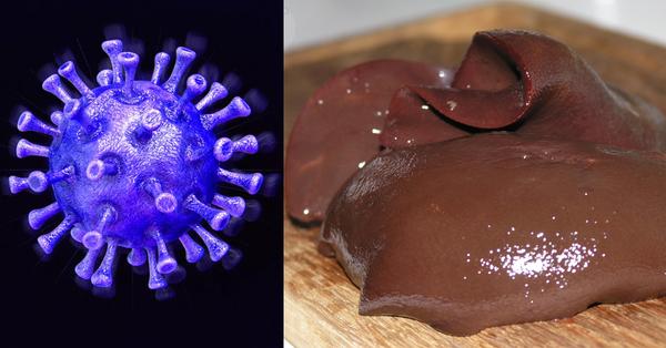 Այս մթերքը կկանխի կորոնավիրուսի տարածումը․ Այն պետք է հաճախ օգտագործեն տարեցները, բժիշկները և ռիսկային գոտում գտնվողները