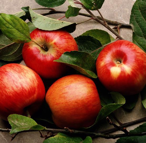 Խնձորի օգնությամբ մաքրել հաստ աղիքը տնային պայմաններում