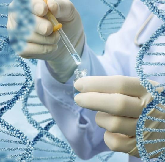 Что такое CRISPR?
