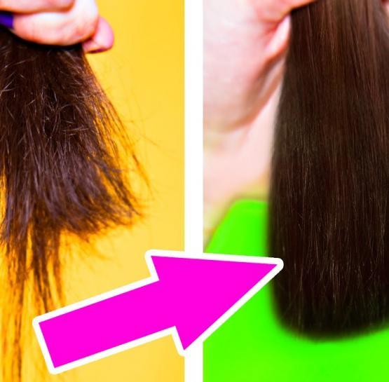 3 հատ գործով բուժող միջոց չոր և ճյուղավորվող մազերի համար