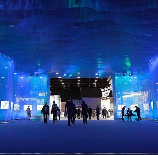 Арктика: настоящее и будущее