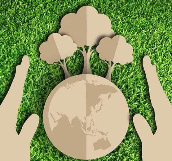 Почему «Экология» подорожала?