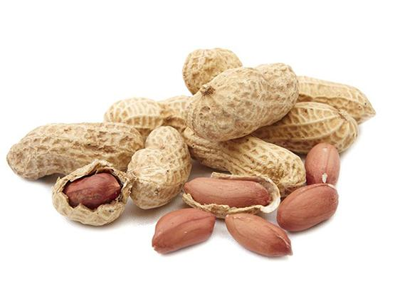 Researchers Say They have Invented Non-Allergenic Peanuts