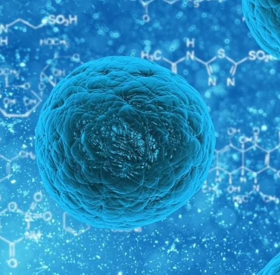 Invisible stem cells