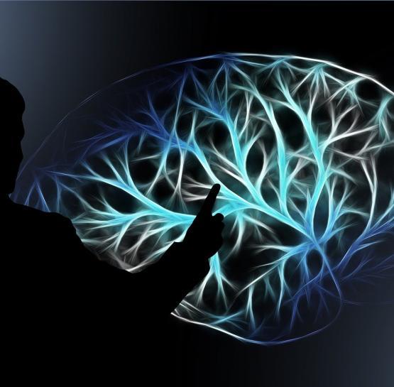 Ուղեղի աշխատանքը ակտիվացնելու և հիշողությունը վերականգնելու համար ձեզ կօգնի այս սուպեր միջոցը